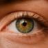 神奈川/横浜でICL手術ができる眼科おすすめ13選(費用比較)【2020年最新版】